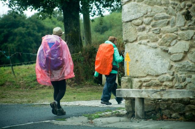 Peregrinos en el Camino de Santiago - Mercedes Rancaño Otero/iStock